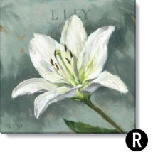 Easter-lily-R
