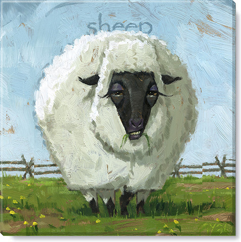 sheep canvas art print