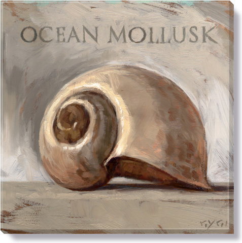 ocean mollusk canvas art print