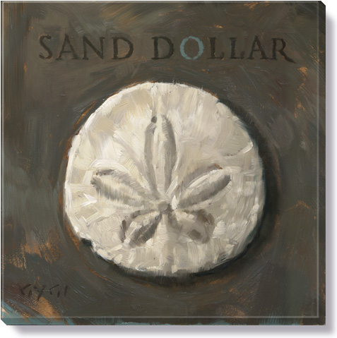 sand dollar canvas art print