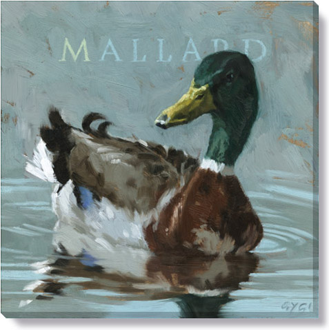 mallard canvas art print