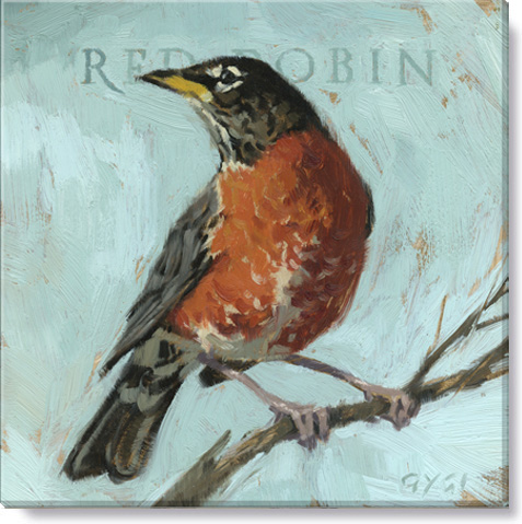 red robin bird art print