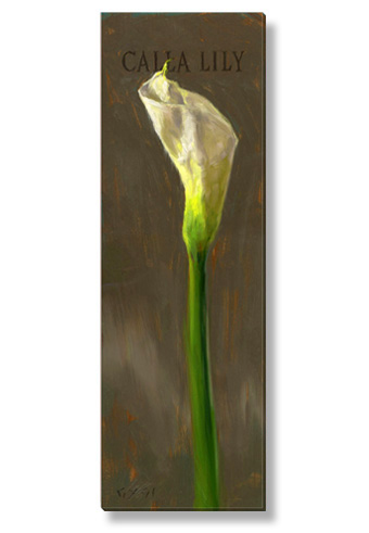 calla lily canvas art print
