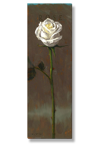 white rose canvas art print
