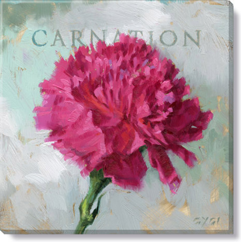 carnation flower giclee art print