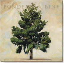 ponderosa pine canvas art print