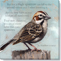inspirational sparrow canvas print