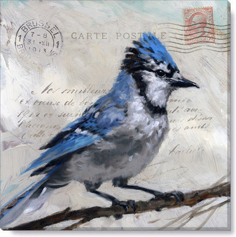 messenger blue jay print