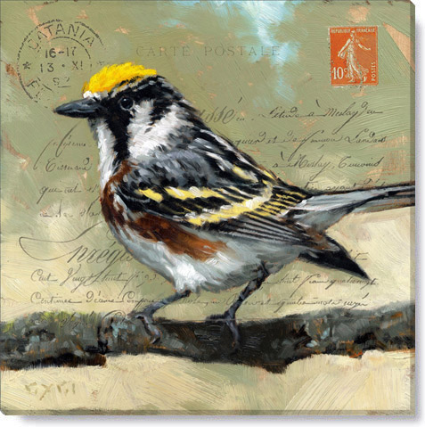 messenger warbler bird painting home wall art