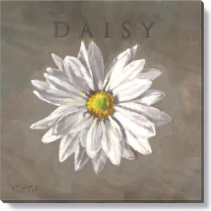 white daisy flower canvas art print