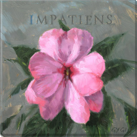 impatiens flower canvas art print
