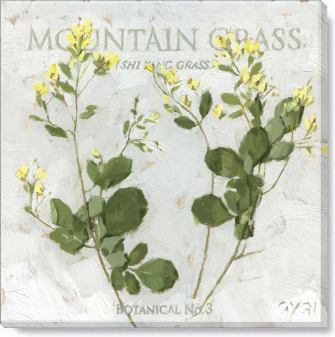 mountain grass canvas art print