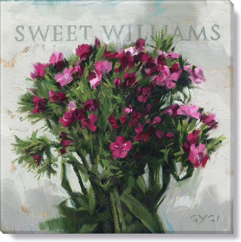 sweet williams flower art print