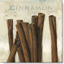 cinnamon canvas art print