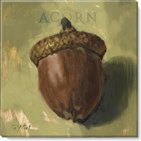 acorn canvas art print