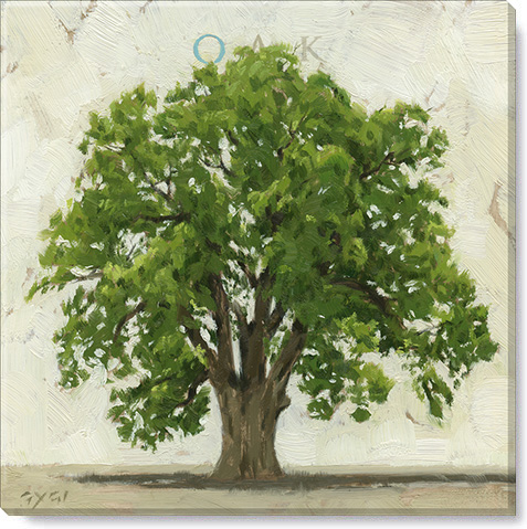 oak tree canvas art print