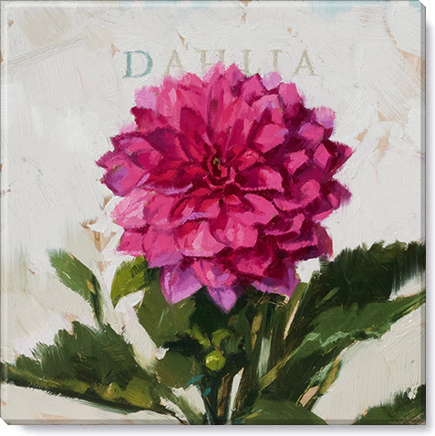 dahlia gallery wrapped giclee print