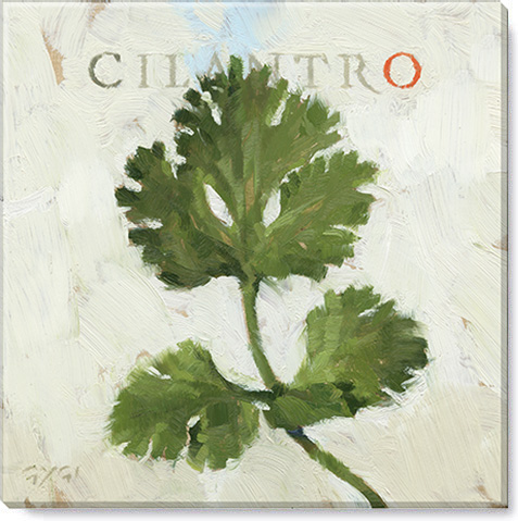 cilantro canvas art print