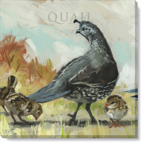 quail mama canvas art print
