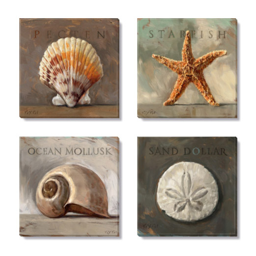 sea shells giclee print set