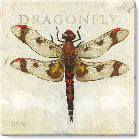 brown dragonfly canvas art print