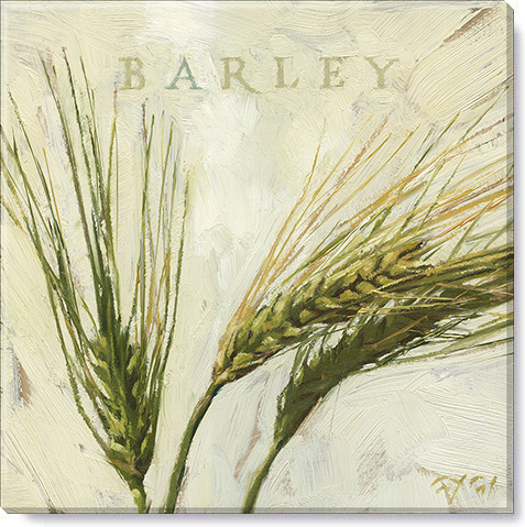 barley canvas art print