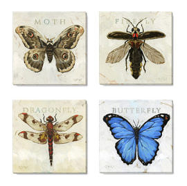 bugs canvas art print set