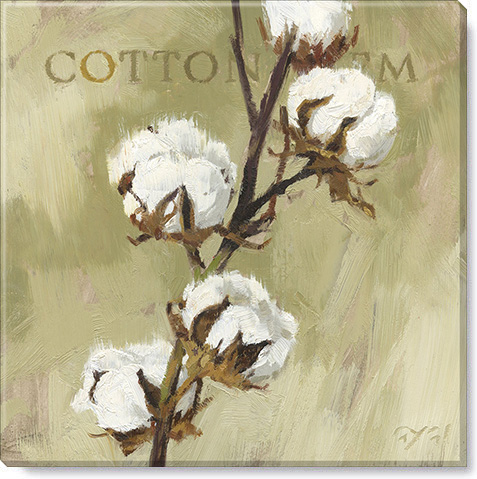 cotton stem canvas art print