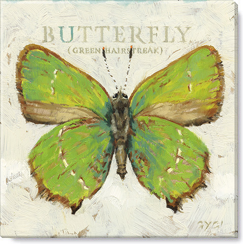 green hairstreak print