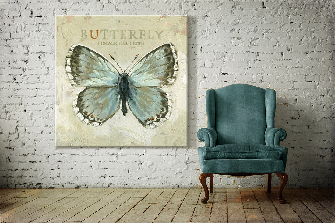 chalk hill butterfly XL print