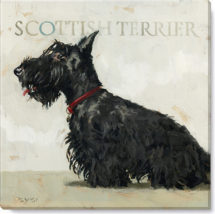 134-ScottishTerrier